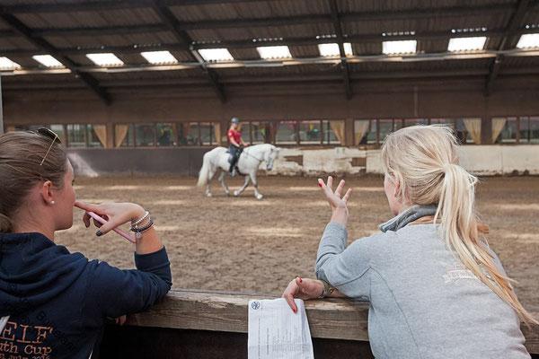 Entrainement Dressage. Photo Krijn Buijtelaar