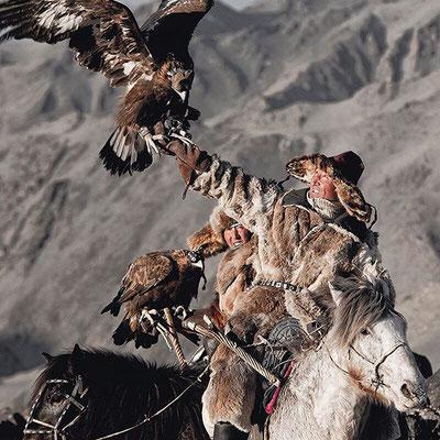 Festival des aigles