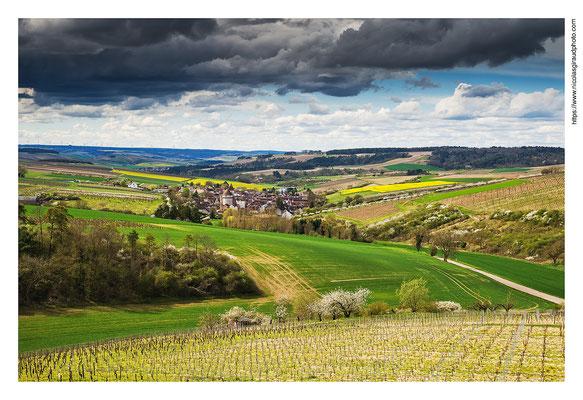 Chitry le Fort - Yonne © Nicolas GIRAUD