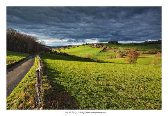Pays du Jarez © Nicolas GIRAUD