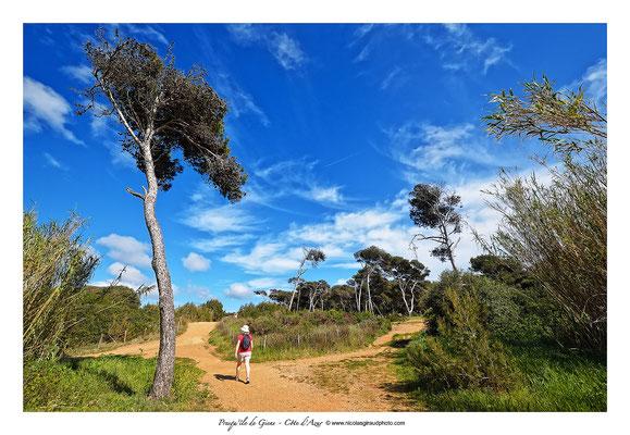 Presqu'île de Giens © Nicolas GIRAUD