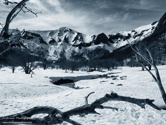 Réserve de Chaudefour - P.N.R. des Volcans d'Auvergne © Nicolas GIRAUD