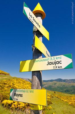 Massif du Tanargue - Ardèche © Nicolas GIRAUD