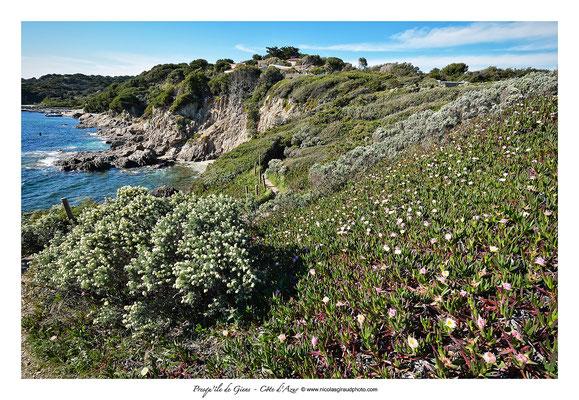 Pointe Madame - Presqu'île de Giens © Nicolas GIRAUD