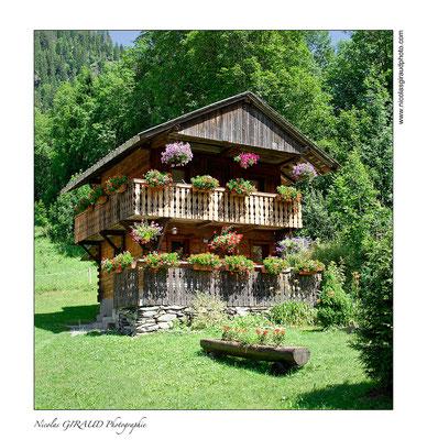 Vallée de l'Abondance - Pays de Savoie © Nicolas GIRAUD