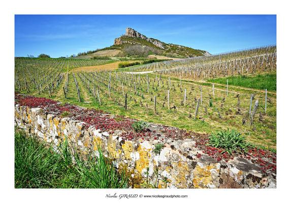 Solutré - Bourgogne © Nicolas GIRAUD