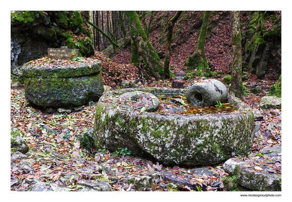 Plateau des Petites Roches  - P.N.R. Massif de la Chartreuse