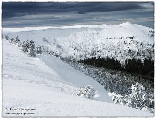Massif de l'Adventif - P.N.R. des Monts Auvergne © Nicolas GIRAUD