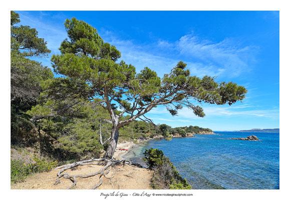Les Criques - Presqu'île de Giens © Nicolas GIRAUD