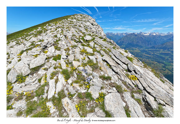 Bec de l'Aigle - Dévoluy © Nicolas GIRAUD