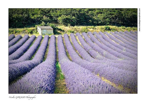 Drôme Provençale © Nicolas GIRAUD