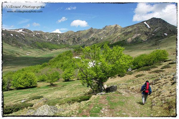 Réserve Naturelle de la Fontaine Salée - P.N.R. des Monts Auvergne © Nicolas GIRAUD