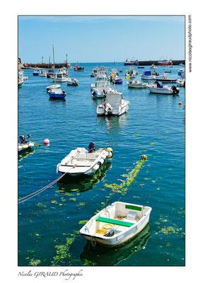 Barfleur - Cotentin © Nicolas GIRAUD
