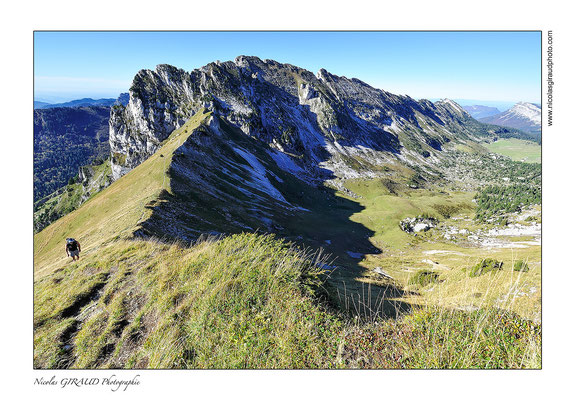 Lance de Malissard - P.N.R. Massif de la Chartreuse