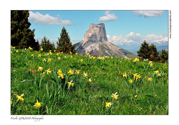 Mont Aiguille - P.N.R. du Vercors © Nicolas GIRAUD