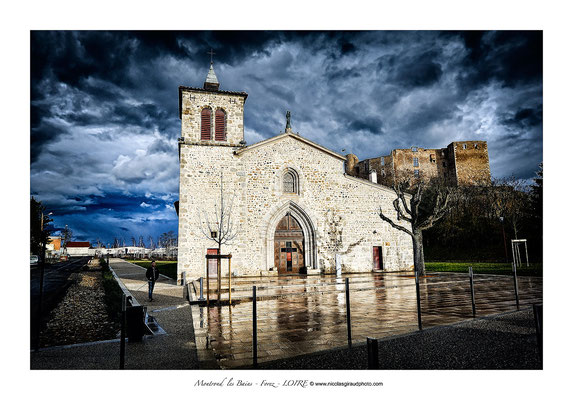 Plaine du Forez - Montrond les Bains © Nicolas GIRAUD