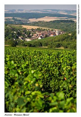 Irancy - Yonne © Nicolas GIRAUD