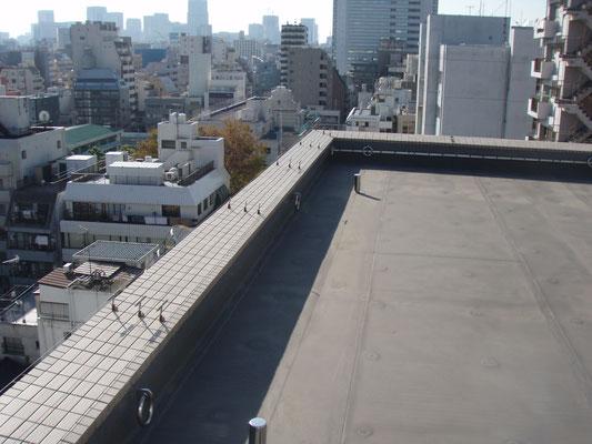 マンション屋上パラペット;2009年12月設置 ; アルティマ防鳥ワイヤー/支柱UBS-T0(ビス用)