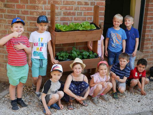 Und wieder etwas gelernt:)  Die Vorschulkinder haben sich mit der Gemüsebepflanzung auseinandergesetzt.  Es konnten die ersten Erdbeeren und Radieschen geerntet und probiert werden.