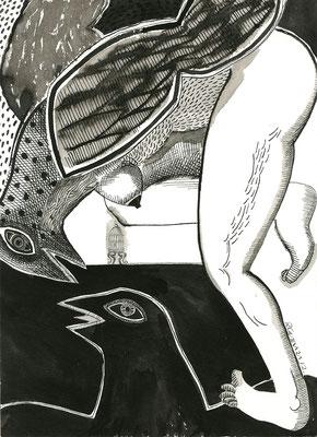 pájaras