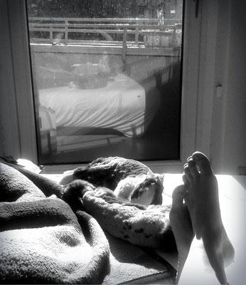 Ein Foto aus den guten Zeiten, Sonnen am Fenster