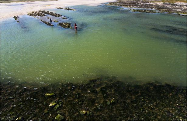 Angler bei Niedrigwasser im Havre von Portbail, 2008