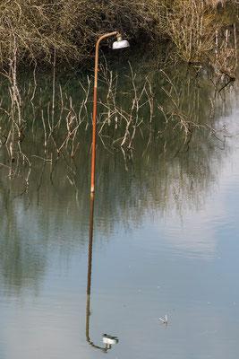 Die ehemalige Kiersgrube wurde geflutet und hat so manche Kuriosität zu bieten.