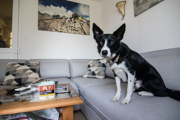 Ben schaut noch etwas ungläubig von der neuen Couch.