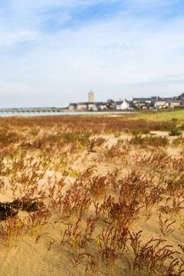 Herbst im Havre von Portbail, 2017