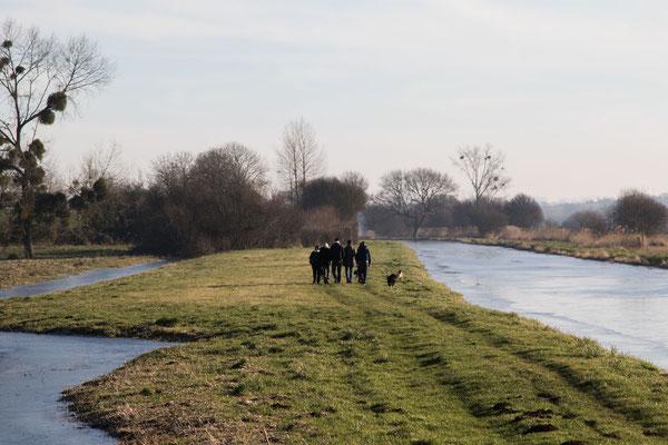 Zwischen den Wasser- oder Eisflächen besteht auch die Möglichkeit, mit den Hunden zu laufen.