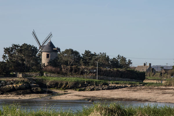 Eine alte Windmühle zwischen Barfleur und Gatteville.
