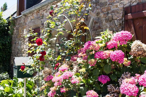 Blumenpracht vor einem authentischen Steinhaus...