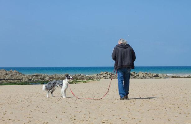 Strand von Biville.
