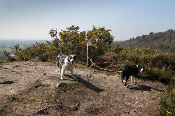 Oben an der Fosse Arthour angekommen, habt Ihr eine gute Sicht aufs Umland – es sei denn, es ist so diesig wie bei uns.