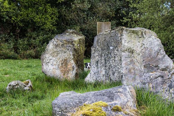 Die Dolmen am Mont Castre