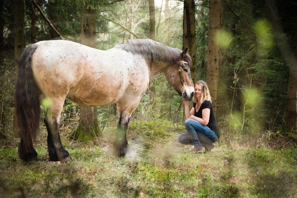 Crailsheim Pferd Pferdeshooting Fotograf