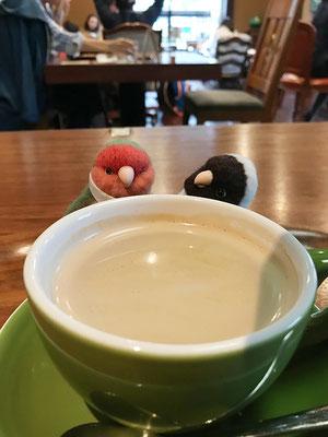 狸穴カフェ
