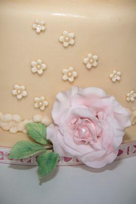 zauberhafte Rose im Detail