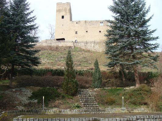 Im Lustgarten den Schlösschen wird es zu später Stunde ein Theaterstück geben. Die Burg im Hintergrund wird mit Titeln verschiedener Autoren illuminiert.