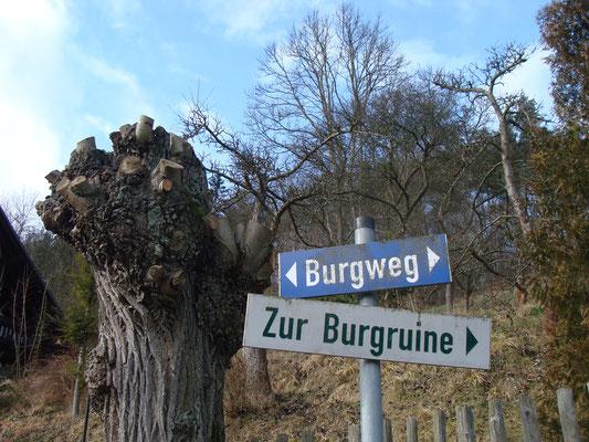 Doch recht schnell war eine gemeinsame Leidenschaft gefunden: Herr Dürer plant, unabhängig von uns, schon seit längerem ein Literaturfestival in seinem kleinen Ort zu installieren. Es sind also ideale Voraussetzungen.