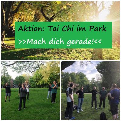 Wu Tai Chi im Park in Neuss