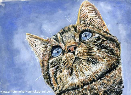 Portrait de chat - gouache