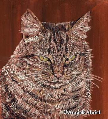 Le chat tigré - gouache