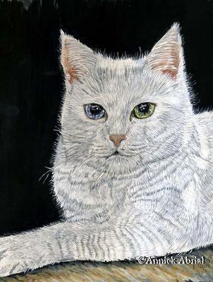 Cristal portrait de chat - gouache