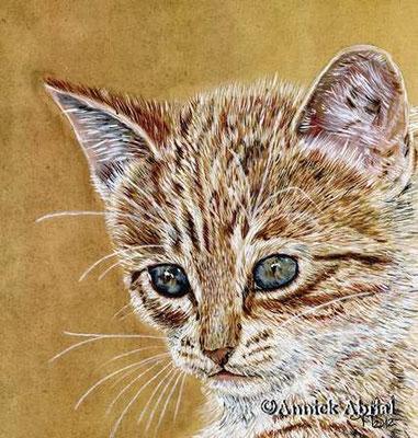 Le chaton - gouache