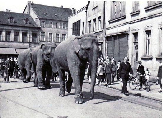 Marktplatz Dudweiler 1951, Elefanten machen Werbung für Circus