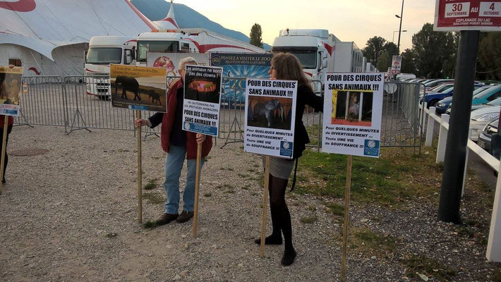 Manifestation contre un cirque organisé par Amis des Bêtes