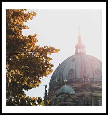 herbst dom premium poster - berlin - city - autumn - sonne - baum - jahreszeiten - natur motiv