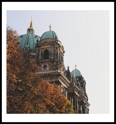 herbst mitte premium poster - berlin - city - autumn - bäume - berliner dom - jahreszeiten - natur