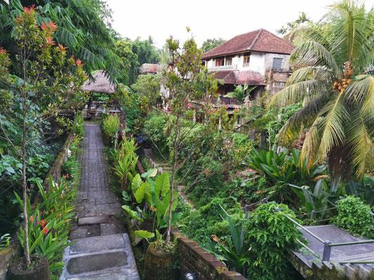 Ubud Bali Warung